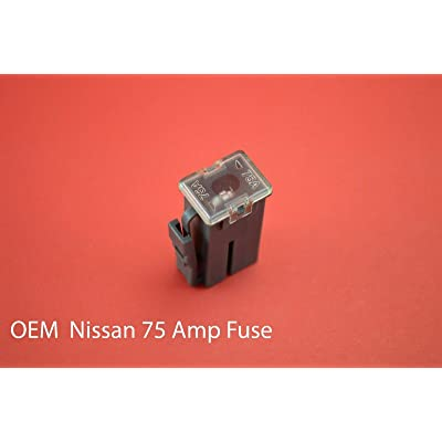 1989-2015 Gray #OEM 24370-89920 2437089920 FL75A 75A 75amp 75 Fuse: Automotive