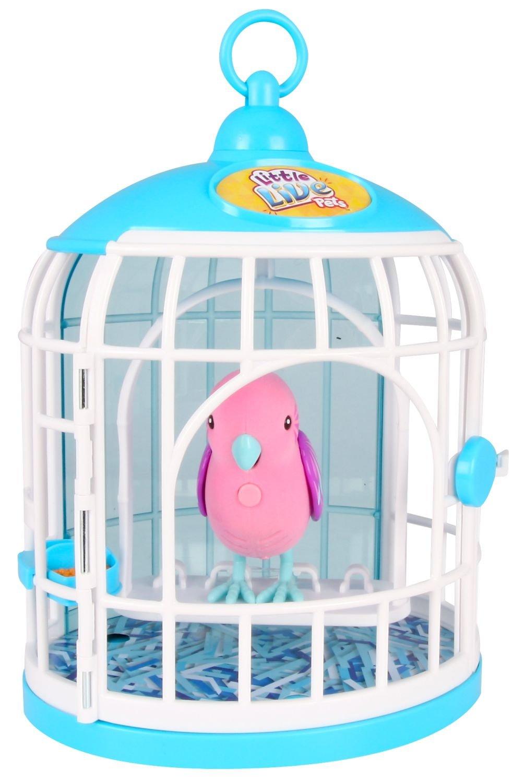 Amazon.es: Little Live Pets 33345 - Chirping y el pájaro Que Habla ...