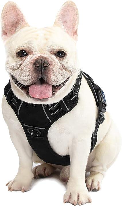 Royalr Seguridad Perro Mascota Arn/és F/ácil Control de Malla Chaleco Correa del Pecho Correas del Cintur/ón