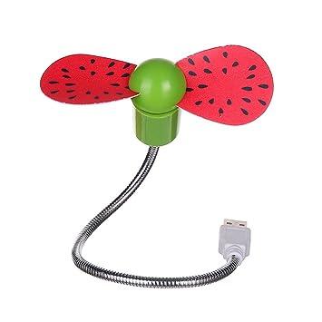 ddellk Mini Ventilador de Frutas USB Portátil para Ordenador de sobremesa Watermelon 31.5cm: Amazon.es: Informática