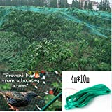 Knitted Anti Bird Netting, Green 4x10m(13'x33') Commercial Pest Net - Plant, Aviary, Tree