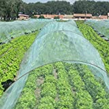 OriginA Garden Netting Insect Screen & Bird Netting, 5x30ft, Green, Mesh Netting