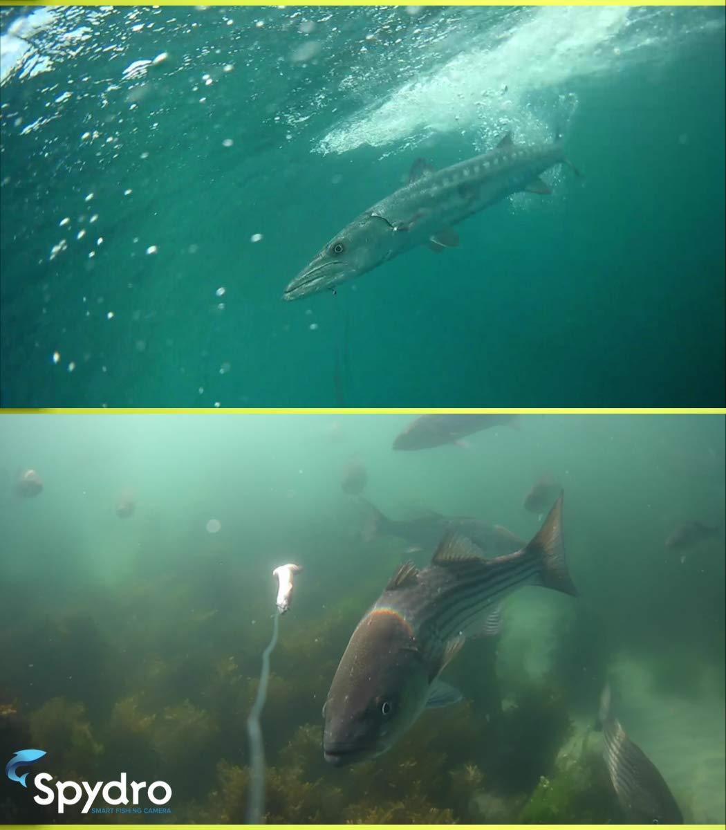 New Spydro 32GB The Best Advanced Smart Underwater Fishing Camera HD 1080