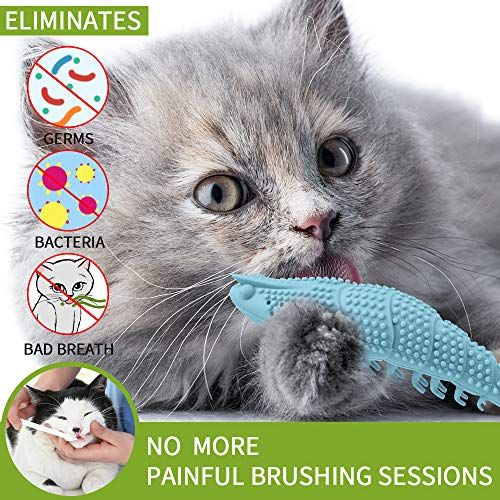Wisedom Cat Toothbrush Catnip Toy Dental Care Refillable Catnip Interactive Playing Feeding Toy with Bell for Kitten Kitty Cats Teeth Cleaning 5