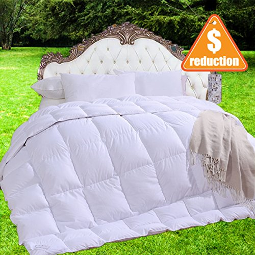 BLUE MOON 90% White Goose Down and 10% Feather Blend Filling Full/Queen Size Comforter 100% Organic Cotton Shell Down Proof-Solid Hypo-allergenic Winter Duvet -Unique Presents for (Natura Organic Comforter)