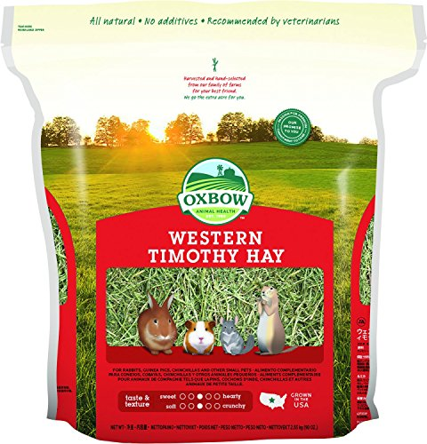 61s8nil3qrL - Oxbow Animal Health Western Timothy Hay for Pets, 90-Ounce
