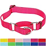 #8: Blueberry Pet 12 Colors Safety Training Martingale Dog Collar, French Pink, Medium, Heavy Duty Nylon Adjustable Collars for Dogs