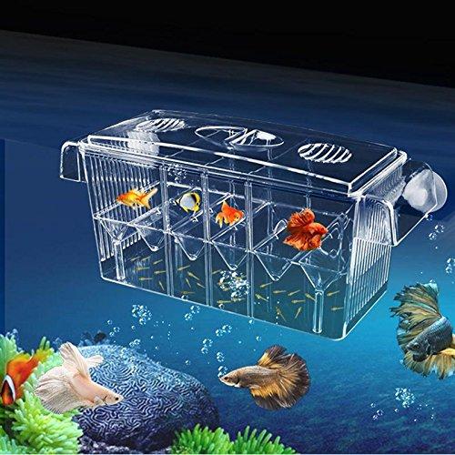 4 Grides Breeding Incubator Isolation Box Fish Tank Aquarium Hatching Transparent Boxes Multifunctional Acrylic Fish Tank Holder by LEO_Pet supplies (Image #9)