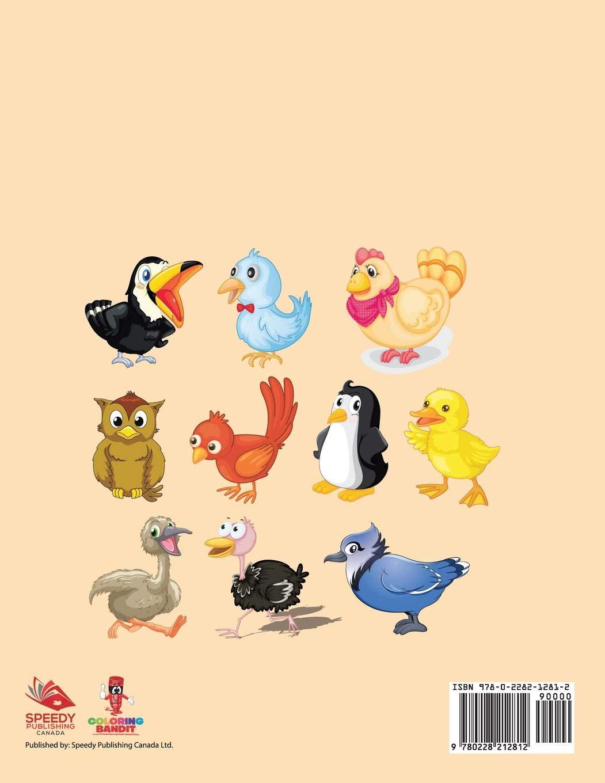 Animales Que Vuelan: Libro Para Colorear De Preescolar ...