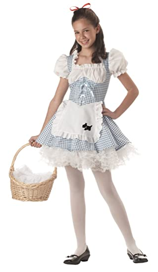 ... california costumes storybook sweetheart costume xl co uk; darling dorothy kids ...  sc 1 st  The Halloween - aaasne & Dorothy Halloween Costume For Kids - The Halloween