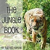 Bargain Audio Book - The Jungle Book