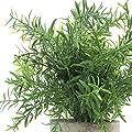Velener Mini Potted Plastic Fake Green Plant for Home Decor (Bamboo Leaves) …