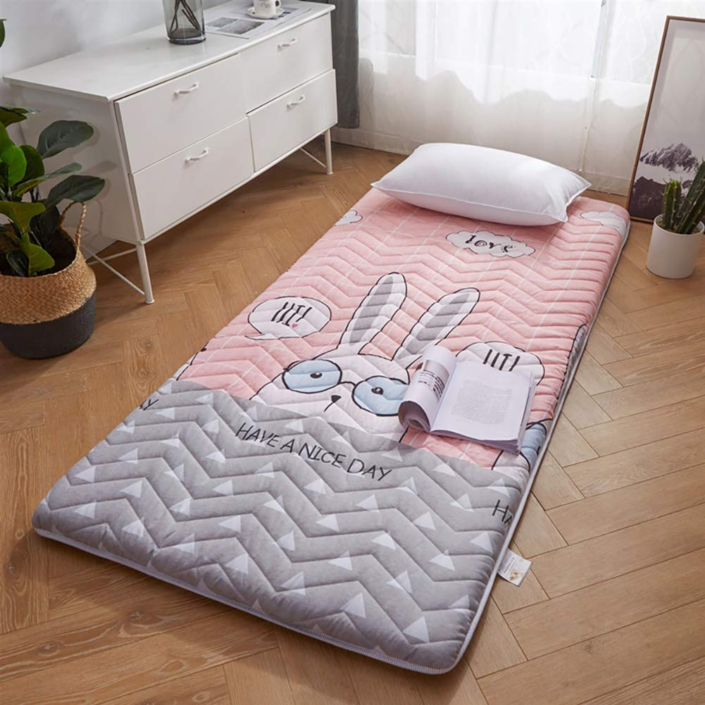 F 150×200cm Japanese Tatami Floor mat,Foldable Student Mattress,Foldable Futon Tatami Mattress Soft Thick Japanese Student Dormitory Mattress Pad,B,150×200cm