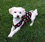 Polka dot dog shirt, available sizes XXS - L