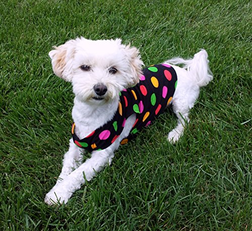 Polka dot dog shirt, available sizes XXS - L by Happy Dog Lucky