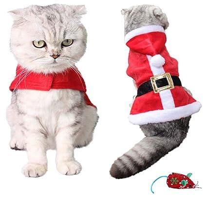 Amazon.com: Disfraz de Navidad para mascotas, diseño de gato ...