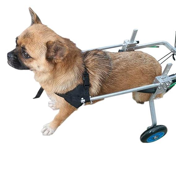 Dog wheelchair Silla de ruedas para perros, entrenamiento de rehabilitación para mascotas, carro de acero inoxidable ajustable en las cuatro ruedas, ...