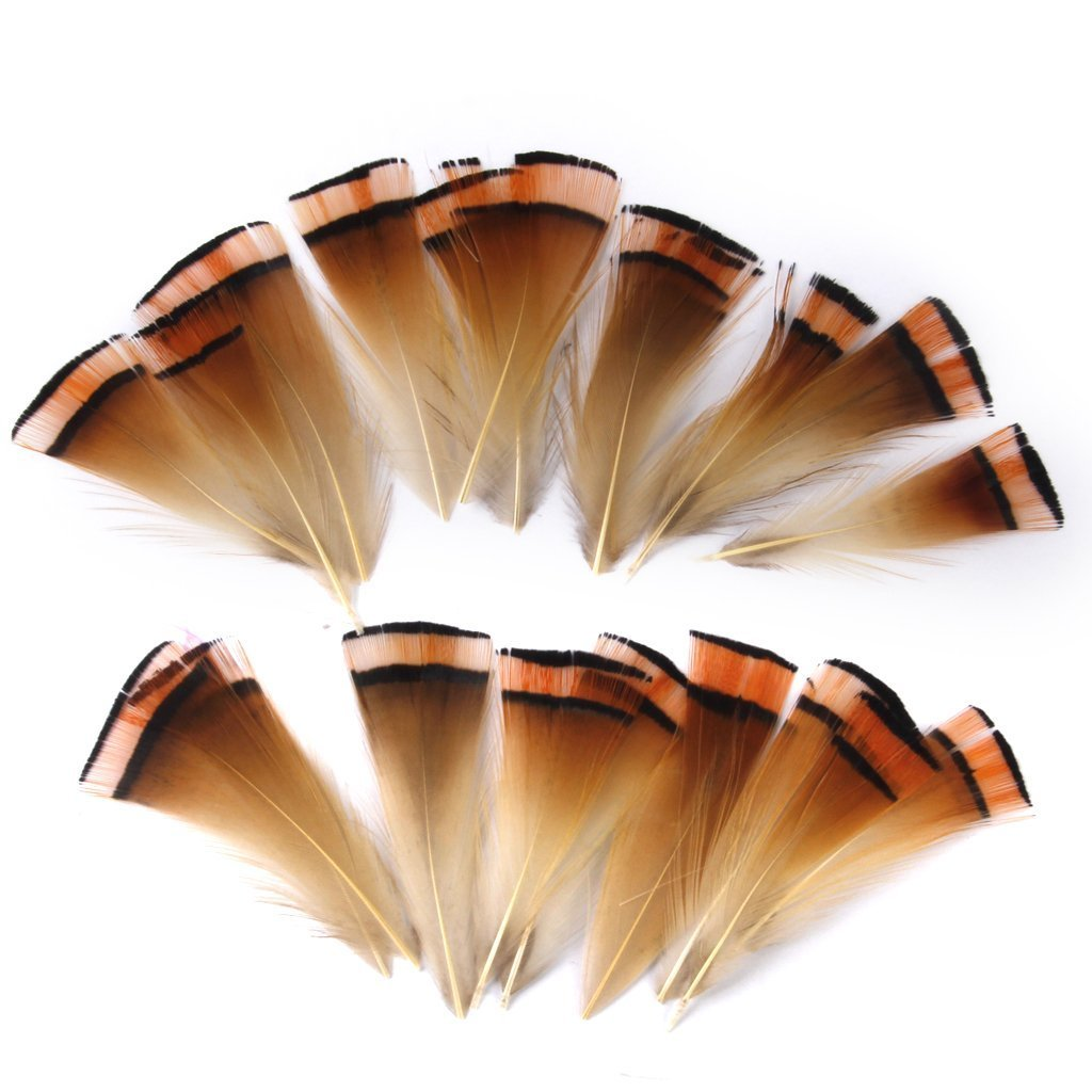Hilai Pheasant Feathers Craft for Mask Hat 6-8cm Pack of Approx. 50pcs