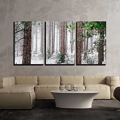 wall26 - 3 Piece Canvas Wall Art - Pine Trees Covered with Snow - Modern Home Decor Stretched and Framed Ready to Hang - 24