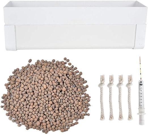 Kit de germinación de jardín Sistema hidropónico Caja de cultivo Caja de cultivo sin agua para plantar o cultivar plantas y flores: Amazon.es: Jardín