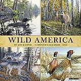 Wild America 2018 Calendar