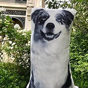 "Cushion Co - Australian Shepherd Black and White Pillow 16"" x 12"""