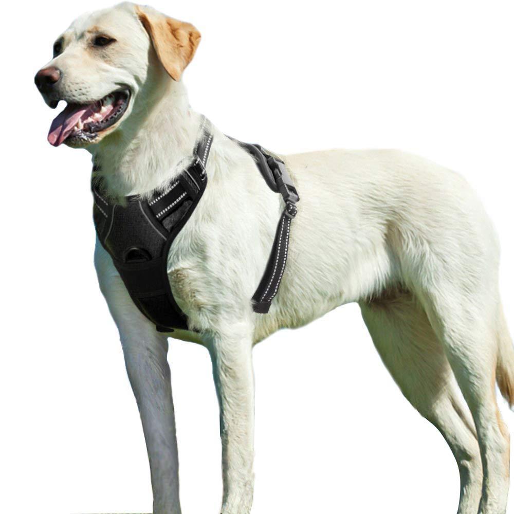 Eagloo Arnes de Perro Antitirones Cómodo Chaleco Ajustable Correa al Cuello y Pecho para Perros Grande