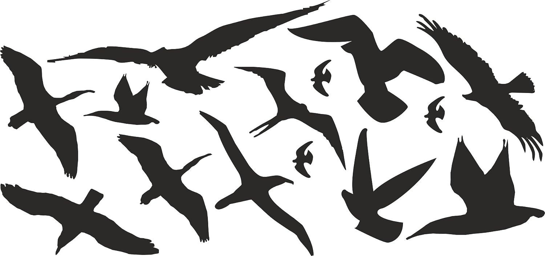 Vogelschutz Und Fensterschutz Groß 10er Set Vogel Aufkleber Warnvögel Wintergarten Wetterfest Baumarkt