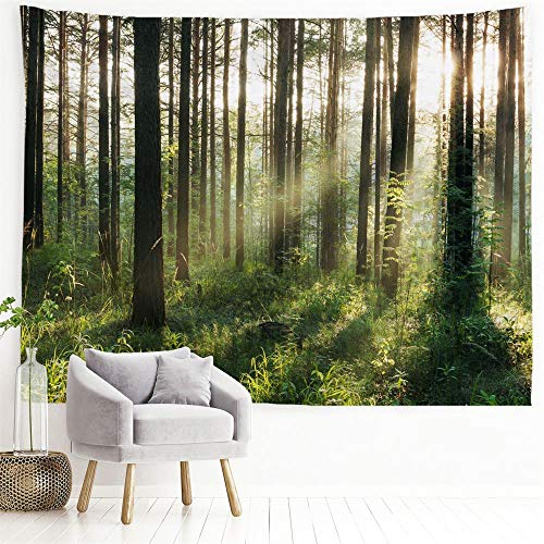 """PROCIDA Home Tapestry Wall Hanging Nature Art Polyester Fabric Tree Theme, Wall Decor for Dorm Room, Bedroom, Living Room, Nail Included - 60"""" W x 51"""" H (150cmx130cm) - Sunlight Forest"""