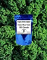 Virgin Seed Supply Vates Blue Kale 300 Count Seed Pack Organic Non-GMO Heirloom Variety