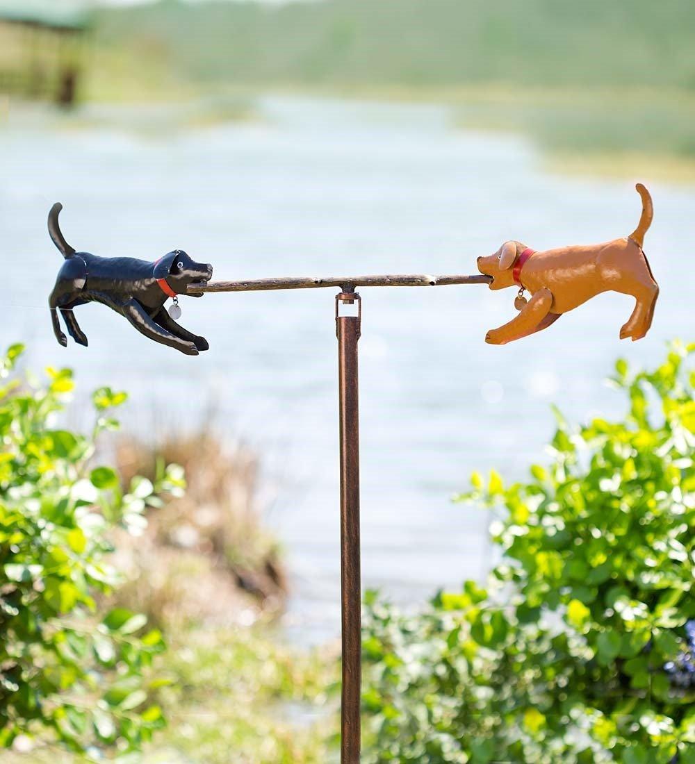Amazon.com: Aceite de cáñamo para perros y gatos – Extracto ...