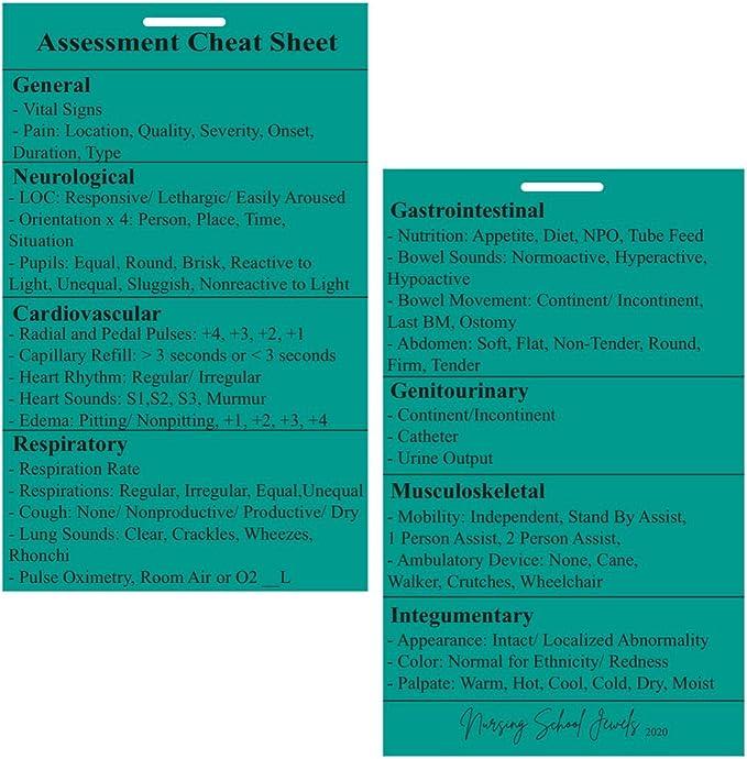 Nursing Assessment Cheat Sheet Badge Buddy in Pink