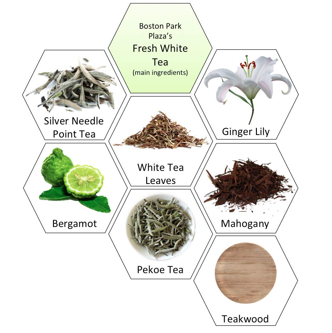 Scentcerely - Aroma Retail 4 oz Fragrance Oil Refill - Fresh White Tea, Experienced at Boston Park Plaza Hotel and Warwick Hotel by Scentcerely - Aroma Retail (Image #3)