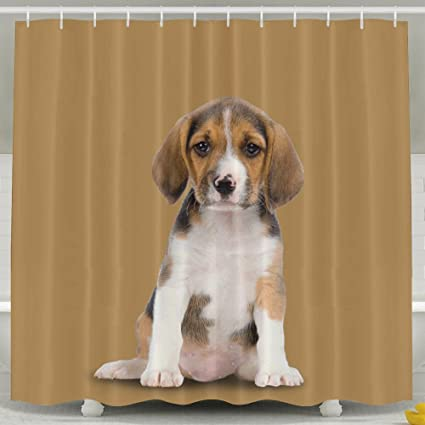 Amazon LETEPRO 60 X 72 Inch Shower Curtain Beagle Dog