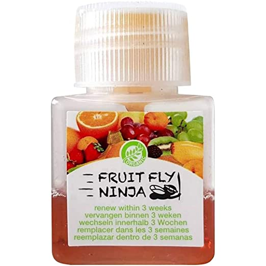 Fruit Fly Ninja Fliegenfalle Fruit-Fly-Trap 42219 (B x H x T ...