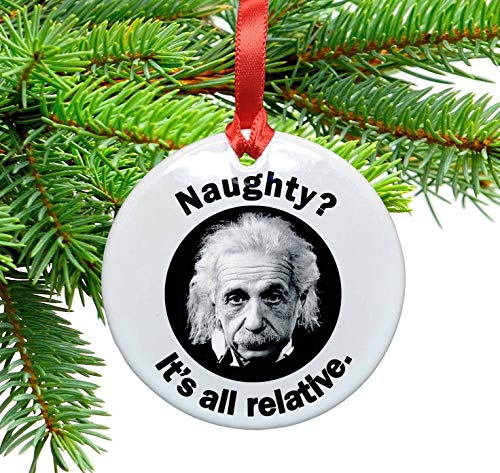Einstein Funny Ceramic Ornament. Naughty? It's all relative.]()