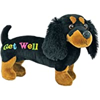 "Just4fun 12"" GET Well Plush - Black Dachshund Dog - Gift for HOSPITALIZED Child or Adult - Weiner - Speedy Recovery…"