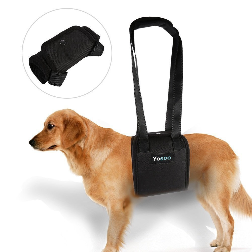 Portable Dog Lift Support Harness - Helps Dog With Weak Front Or Rear Legs Stand Up, Walk, Get Into Cars, Climb Stairs For Disable, Injured, Elderly Pet (S)