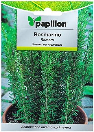 Semillas Aromaticas Romero (0.1 Gramos): Amazon.es: Jardín
