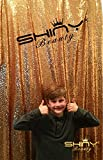 ShiDianYi Gold-SEQUIN BACKDROP-8FTx10FT Sequin Photo Backdrop,Photo Booth Background,Sequence Christmas Backdrop Curtain ON SALE