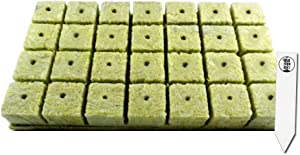 "1.5"" Rockwool Starter Plugs, 1 Sheet of 28 Plugs + 1 THCity Stake"
