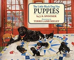 Children S Book Martha S Vineyard Black Dog