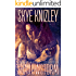 Shadowstorm (The Storm Chronicles Book 4)
