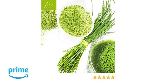 Bio hierba de cebada polvo 500g Bio hierba de cebada polvo vegetariano de la agricultura ecológica: Amazon.es: Salud y cuidado personal