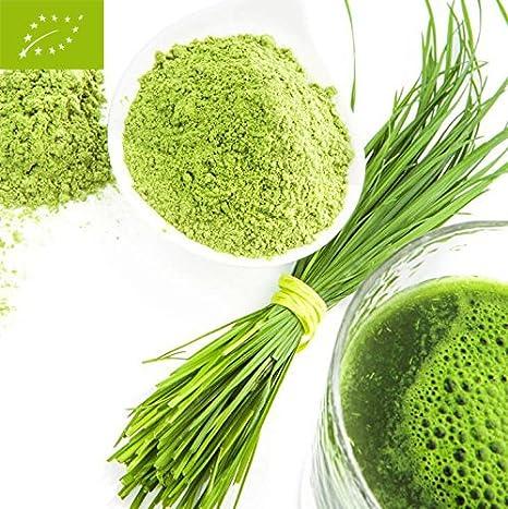Bio hierba de cebada polvo 500g Bio hierba de cebada polvo vegetariano de la agricultura ecológica