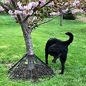 Amazon.com : Dawg Tree Pee Guard : Garden & Outdoor