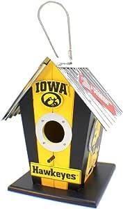 University of Iowa Bird House
