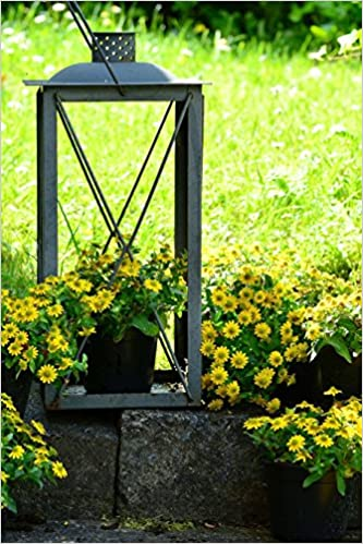 Book An Old Lantern Turned Into a Daisy Planter: Blank 150 page lined journal for your thoughts, ideas, and inspiration