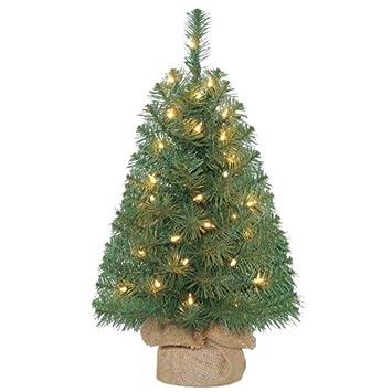 Image Unavailable - Amazon.com: 2ft Pre-Lit Noble Fir Green Artificial Christmas Tree