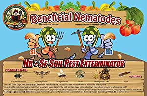 10 Million Live Beneficial Nematodes Hb & Sf - Kills Over 200 Different Species of Soil Dwelling and Wood Boring Insects.